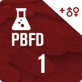 Pack PBFD + DNA Sexing Test