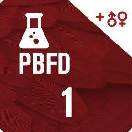 Pack PBFD + Sexage par ADN