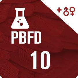10 PBFD + 10 Sexados por ADN