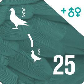 BONO 25. Genotipado y filiación (50 palomas)