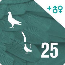 BONO 25. Genotipado y filiación (25 palomas)