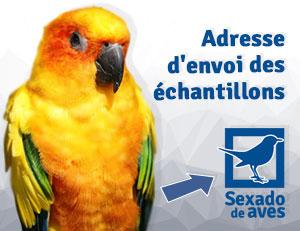 Envío muestras sexado de aves