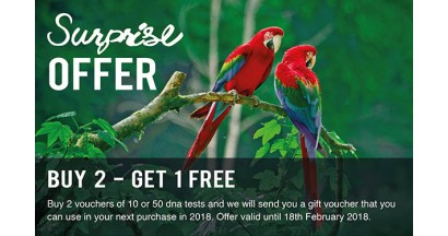 SURPRISE OFFER – BUY 2 GET 1 FREE