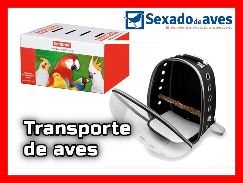 CONSEJOS TRANSPORTE AVES