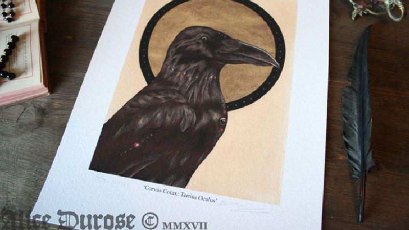 Ilustración del Cuervo de tres ojos de Juego de Tronos