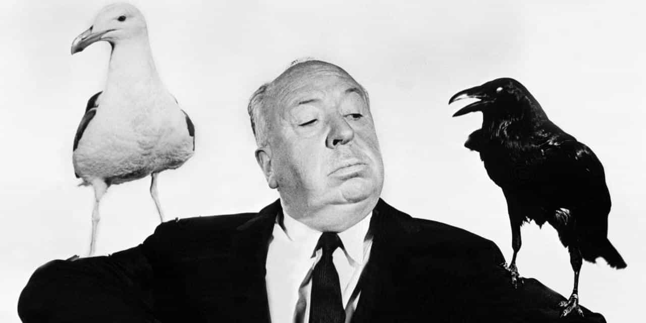 famous birds that performed in successful films