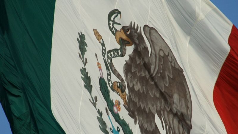 pays avec des oiseaux dans leurs drapeaux