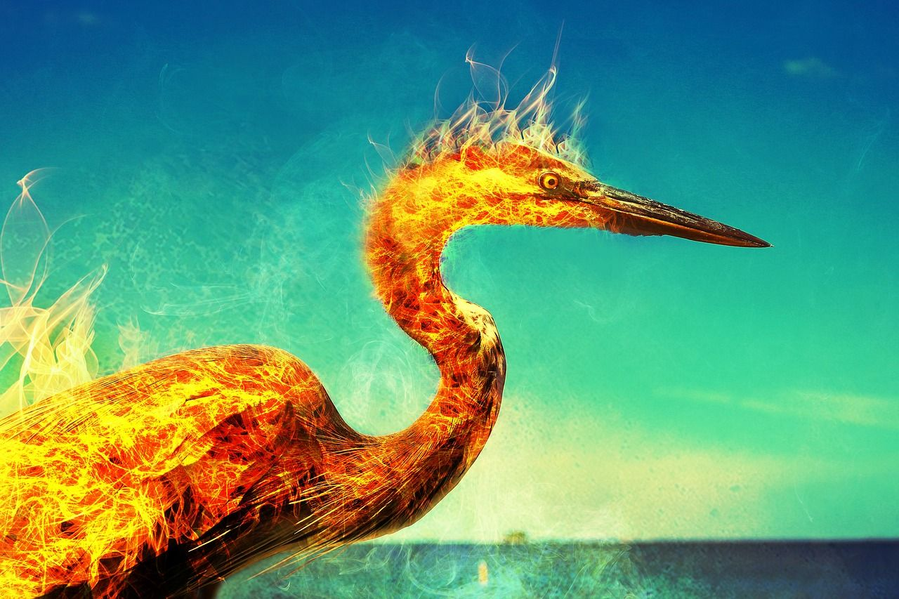 aves mitológicas fénix