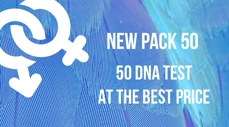 Pack 50 DNA Sexing Test
