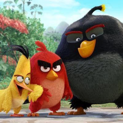 Aves protagonistas de películas