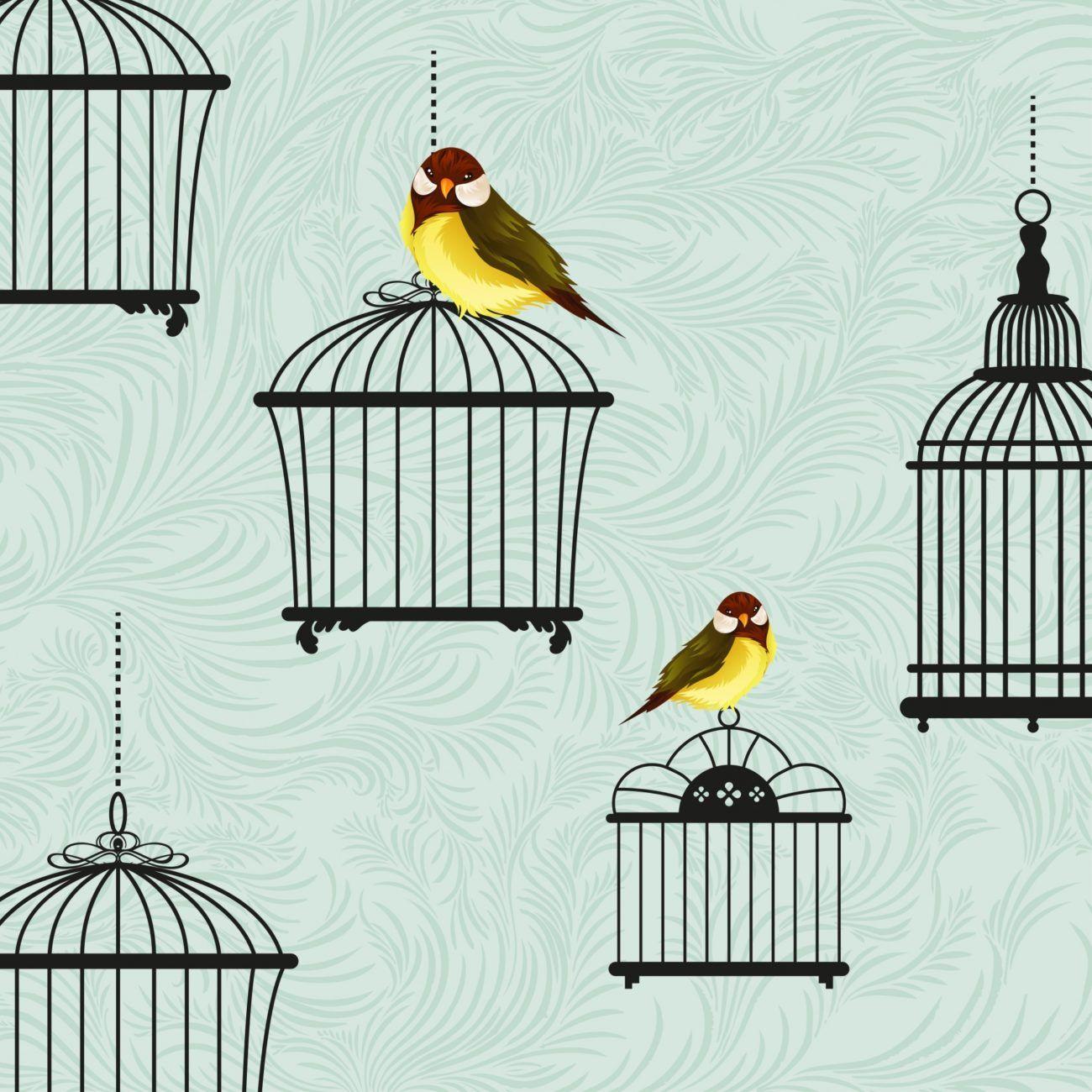 Mejores jaulas para aves