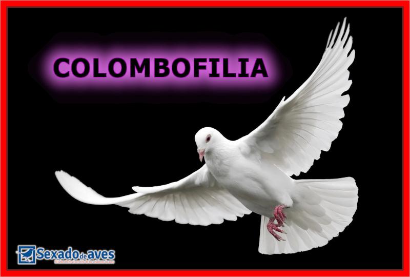 COLOMBOFILIA